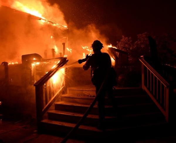 تصاویر/ نصف جنگلهای کالیفرنیا در آتش سوخت